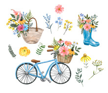 Summer Watercolor Illustrations Set. Colorful Wildflowers, Herbs, Vintage Blue Bicycle With Basket, Rain Boot With Floral Bouquet, Isolated On White Background. Shabby Chic Country Style Painting.