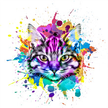 Cat Head With Creative Abstract Elements On Colorful Background