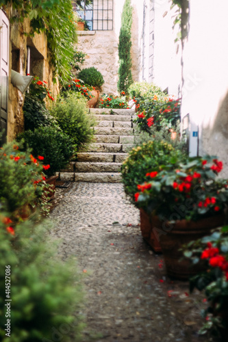 Fototapety, obrazy: street in the old town