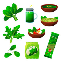 Set Of Spinach Food, Flat Vegetable Products