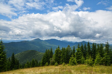 Mountains And Spruce Forest Under Low Clouds In The Overcast Sky. View To Gorgany Ridge And Mount Khomyak. Carpathians, Ukraine