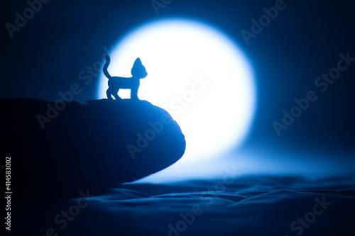 Fototapeta gato filo montaña