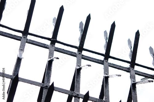 Fototapeta 柵のトゲ