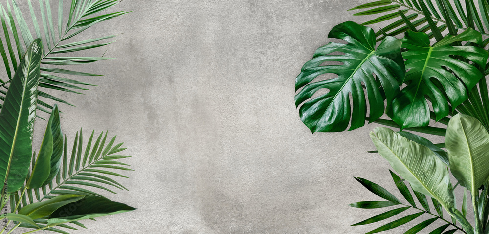 Product display with natural concept, tropical leaves on cement background. Material for advertising and creativity.