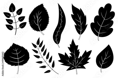 Obraz na plátně Set of 9 black and white leaves and branches