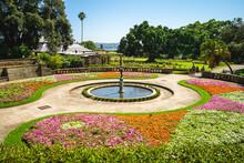 Scenery Of Royal Botanic Gardens In Sydney, Australia