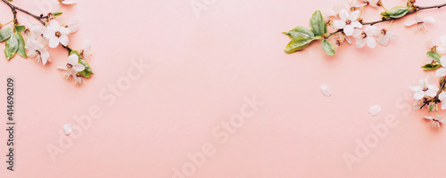 Sakura background with flower blossom and April floral nature on pink Fototapet