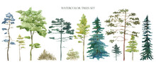 Watercolor Tree Set. Green Pine, Blue Spruce, Lush Ash, Beige Bush