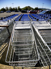 Vertical Shot Of Rows Of  Metal Shopping Carts Outdoors On A Parking Lot Of Supermarket