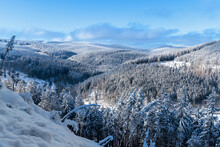 Winter Im Thüringer Wald Bei Luisenthal