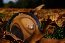Crystal Ball On Dried Golden Leaves In Park.