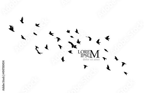 A large flock of flying birds. Vector illustration Fototapet