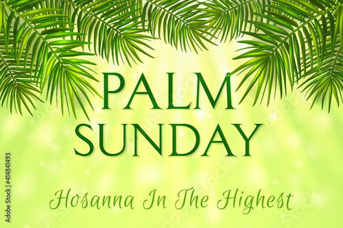 Palm Sunday - greeting banner template for Christian holiday, with palm tree leaves background Wallpaper Mural