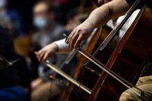 Hands Of A Musician Playing Cello In An Orchestra