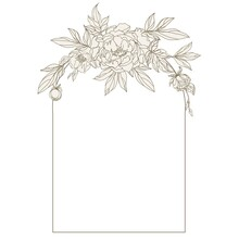 Beautiful Frame With Peonies