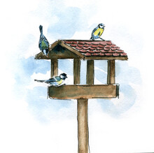 Watercolor Winter Sketch With Birds On The Feeder