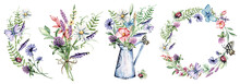 Flower Set Watercolor Drawing. Wildflowers, Butterflies. Floral Illustrations. Chamomile, Clover, Cornflower.
