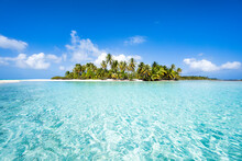 Tropical Island In The South Seas