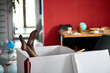 canvas print picture - Woman legs sticking from big box with leaky stockings, after party chaos