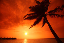 Sunset Over The Boathouses In Filitheyo Island, Maldives