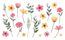 Flower And Branch Collection. Set Of Vintage Style  Flowers, Peonies, Anemones, Daisies, And Cornflowers Isolated On Wihite Background. Vector Illustration.