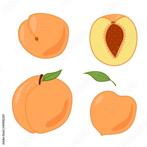 Obraz A set of peaches, whole and cut. Colored isolated objects on a white. Cartoon. - fototapety do salonu