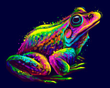 Frog. Abstract, Neon, Vector Portrait Of A Frog On A Dark Blue Background In Watercolor Style. Digital Vector Graphics.