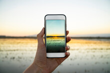 Young Woman Photographing Sunset Over Rice Paddy At Ebro Delta Through Smart Phone
