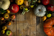 Large Variety Of Fresh Pumpkins, Squashes And Other Fruits On Wood