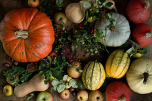 Still Life Of Large Variety Of Fresh Pumpkins, Squashes And Other Fruits