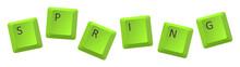 Vector Green Spring Key Inscription