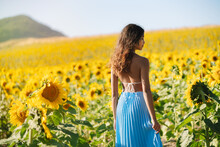Back View Of Slim Beautiful Ethnic Female Standing In Field With Blooming Sunflowers On Sunny Day In Summer Looking Over The Shoulder