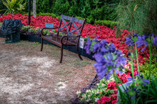 A Sitting Bench Among The Colorful Flowers In A Garden View