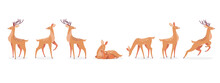 Cartoon Deer Set. Male Horny, Female, Baby Fawn Spotted Reindeers In Different Poses Isolated On White. Vector Illustrations For Wildlife, Animals Family, Forest Fauna Concept
