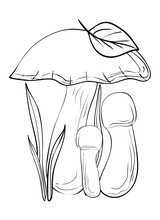 Mushrooms. Coloring, Clip Art, Line Art. Vector Isolated Illustration.