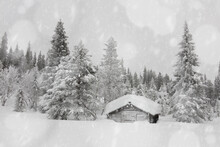 Snowflakes Falling On Traditional Wooden Hut In The Snow Capped Forest, Lapland, Finland