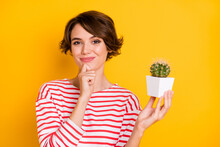 Photo Of Optimistic Brunette Lady Hold Plant Hand Chin Wear Red Shirt Isolated On Orange Color Background