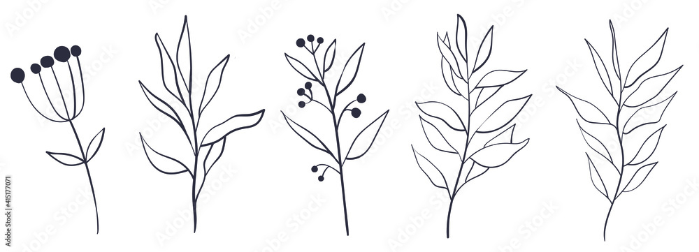 Fototapeta Botanical wall art vector set  boho Foliage line art drawing with abstract shape