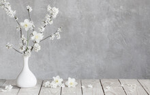Cherry Flowers In White Vase On Background Old Gray Wall