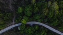 Aerial Shot Of A Dense Forest With Gree Trees And A Road - Green Environment