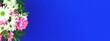 Leinwandbild Motiv Background of sprig flowers on a blue background, copy space, border with flowers, festive bouquet