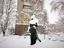 Snow-covered Trees, Bushes, A Statue In The City. Russia, Belorechensk, Winter City. Snow-covered Sculpture.