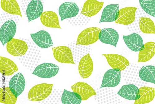Fototapeta 爽やかな新緑の飾り枠素材 obraz