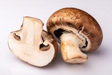 Two Mushroom On White Background