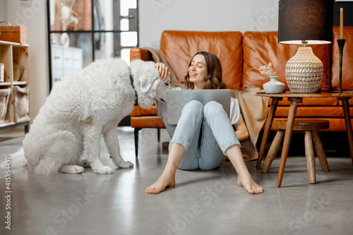 Fotografie, Obraz Cheerful woman working in laptop while sitting near sofa at home and playing with white dog