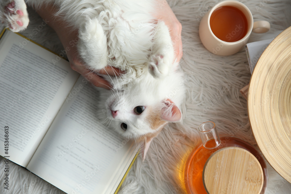 Fototapeta Woman with cute fluffy cat, tea and book on faux fur, top view