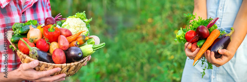 A child holds a harvest of vegetables in his hands. Selective focus.
