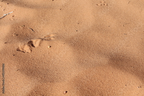 Stampa su Tela sand at arches national park utah