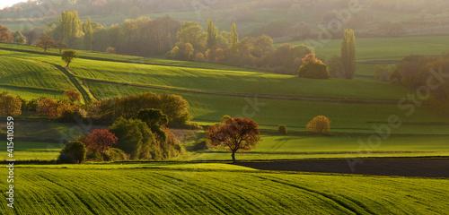 Photographie Gorgeous autumnal landscape inPuy de Dome department, Auvergne-Rhone-Alpes, Fran