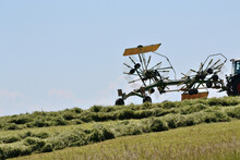 Rotary Swather With The Haymaking